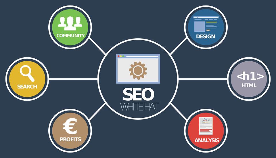 Websites that teach SEO
