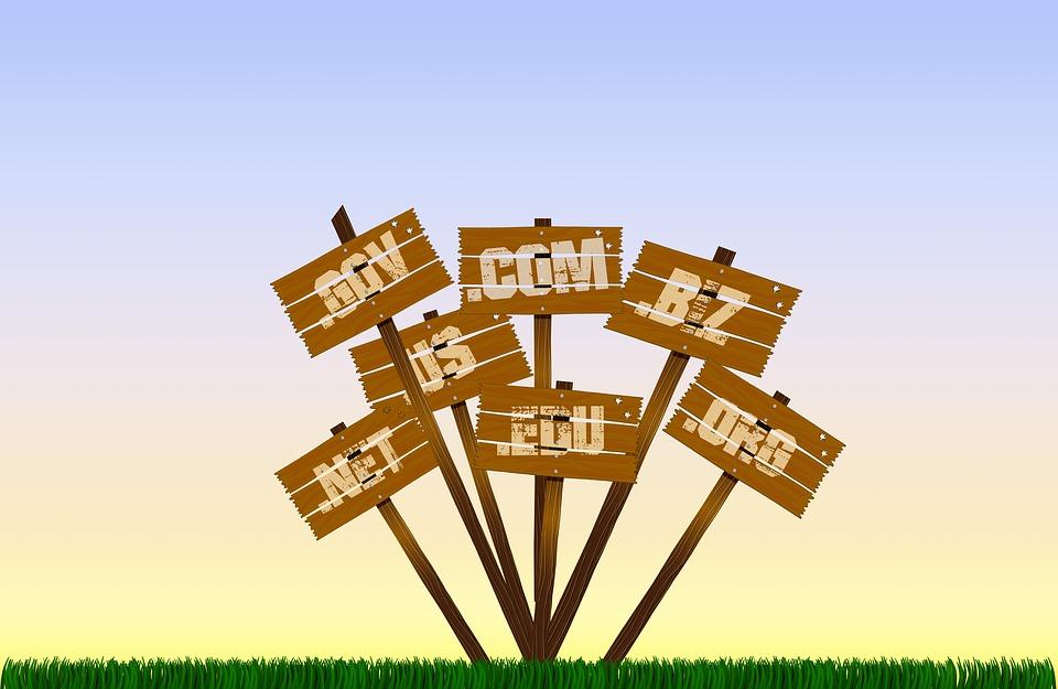 Maximize SEO with Domain Name